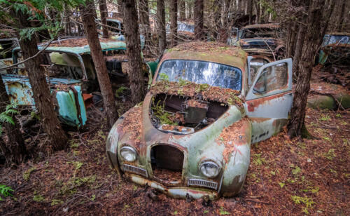 Automotive Graveyard 7 7 7.5 21.5 Mike Mulvale  Pictorial Silver