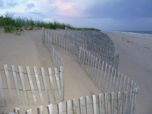 Long Island Beach Fences 7 7 8 22 BPP Malcolm Stagg  Pictorial Bronze