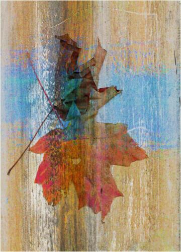 Autumn Design 7.5 7.5 7 22 Leonie Holmes FCAPA  Creative Master