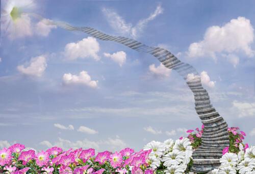 Stairway To Heaven 9 7.5 8 24.5 HM GPP Elzbieta Piskorz  Creative Gold
