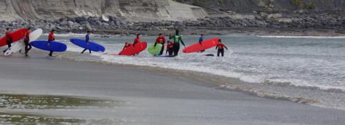 Surfing School - Ireland 7 7 6.5 20.5 Malcolm Stagg  Pictorial Bronze