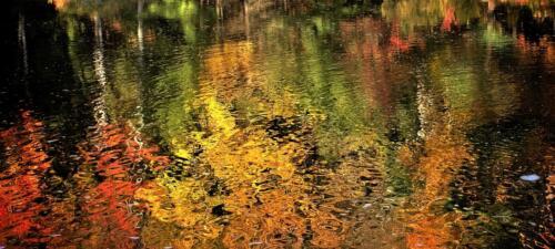 Reflecting Fall 6 6.5 7 19.5 Marino Favretto  Creative Silver
