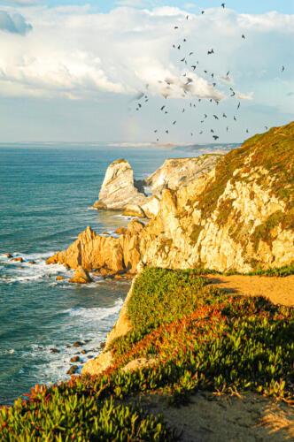 Atlantic Cliffs 6 6.5 7 19.5 Herb McClelland  Pictorial Gold
