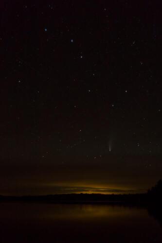 Neowise Comet 7 7.5 7 21.5 Geoffrey Skirrow  Nature Gold