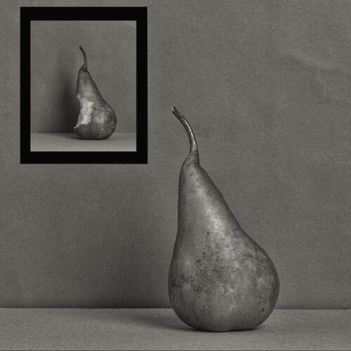 Pear Destiny 7.5 8.5 8 24 HM GPP Ed Espin  Pictorial Gold