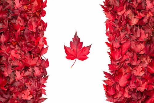 Canada Flag 6.5 8 8 22.5 Geoffrey Skirrow  Pictorial Gold
