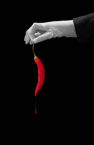 Hot Pepper Handle With Care 7 8 7.5 22.5 Bertin Francoeur  Creative Master
