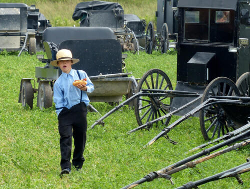 Amish Boy At An Auction Sale 7 7.5 7 21.5 Heather Engel  Pictorial Master