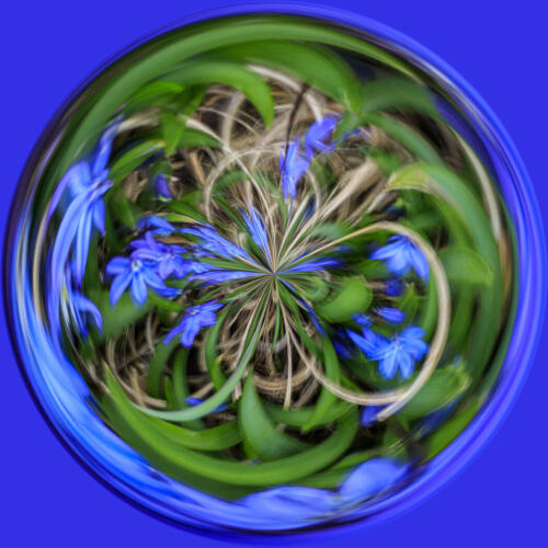 Spring Flower Orb 6 7 7.5 20.5 Don Poulton  Creative Master