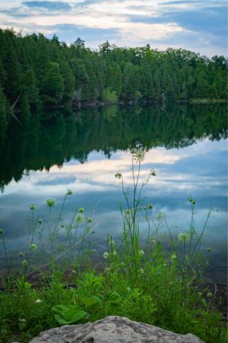 Be Still & Know Crawford Lake 7 7 7 21 BPP John Kerr  Pictorial Bronze