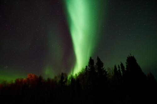 Northern Lights 22.5 SPP Chris Vermaak  Nature Silver