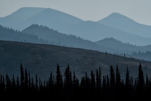 Forest Fire Smoke 21.5 Peter Bartens  Nature Master