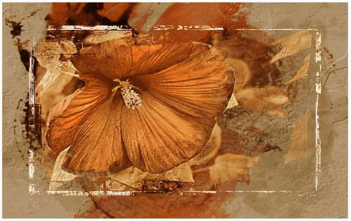 Golden Hibiscus 23.5 GPP Leonie Holmes  Creative Gold
