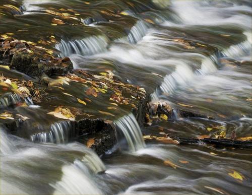 Waterfall In Autumn 23 GPP Leonie Holmes  Pictorial Gold