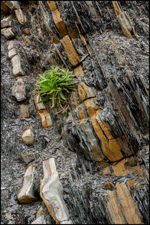 Paleozoic rock formations  22  Pictorial  Silver  Riana  Vermaak
