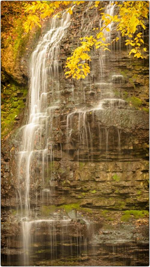 Tiffany Falls  20.5  Pictorial  Silver  Riana  Vermaak  Vertical was a good choice for the frame. Good choice of shutter speed for the water.  Image would benefit from a bit more contrast.