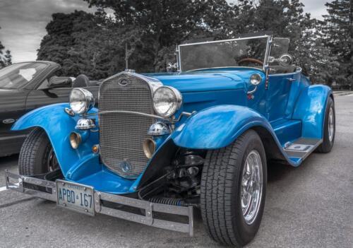 Blue Roadster  22.5  Pictorial  Gold  Bertin  Francoeur