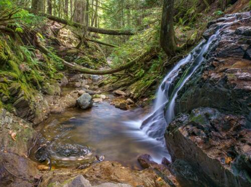 Sechelt waterfall  24  Pictorial  Silver  Andy  Langs