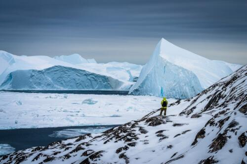 In awe of the icebergs  23.5  Pictorial  Gold  Kathryn  Martin