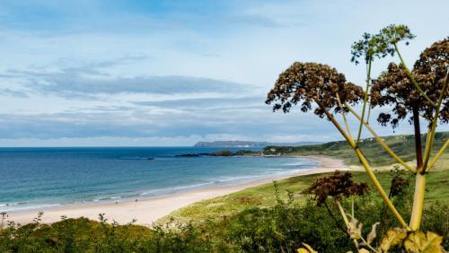 Irish Coast 7 6 6.5 19.5 Herb McClelland  Pictorial Silver