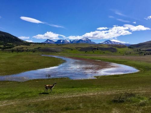 Patagonia 7.5 7.5 6.5 21.5 Ewa Rakowski  Pictorial Silver