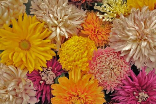 Mum Bouquet 7 7.5 6.5 21 James Hamilton  Pictorial Gold