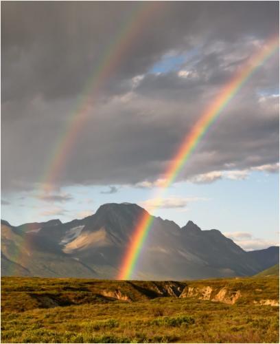 Double Rainbow 6.5 8.5 7.5 22.5 SPP Riana Vermaak  Pictorial Silver