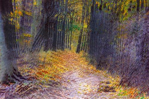 Forest Abstract 20 Creative Gold Victor Turczynski