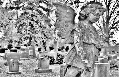 Angel's Escape 19.5 Creative Gold James Hamilton