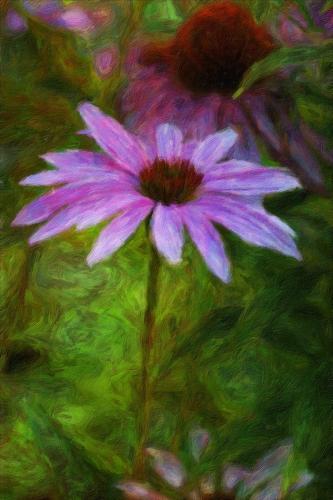 Cone flower 23 Creative Gold GPP Leonie Holmes