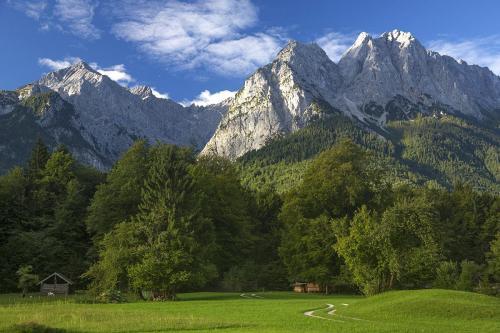 ZugspitzeWest of Garmisch 21.5 Pictorial Gold Graham Jardine