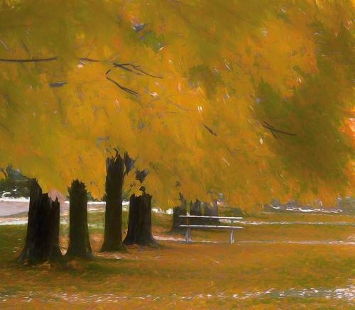 Autumn with 1st Dusting of Snow 21.5 Creative Gold Virginia Stranaghan