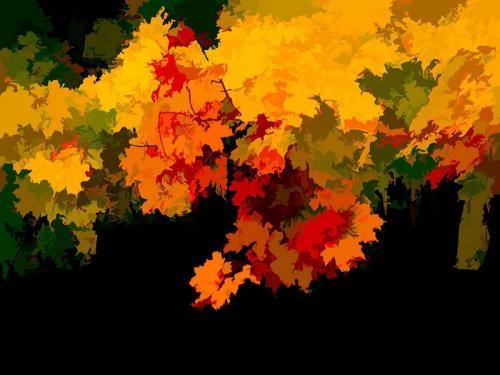 Wet Fall Colours 21.5 Creative Gold Robert Melnyk