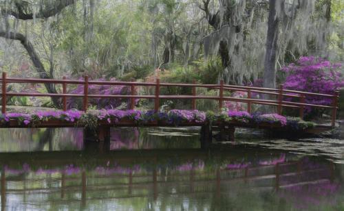 Dreamy South Carolina Garden  6.5 7 7.5 21 Judy Boufford  Creative Gold