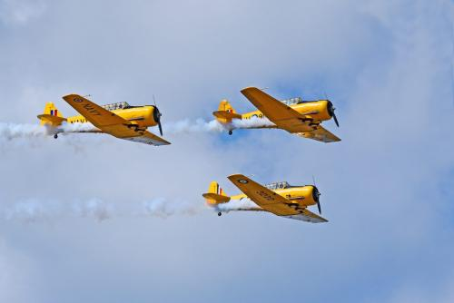 3 Planes Air Show 8 7.5 8 23.5 HM SPP Carey Hope  Pictorial Silver