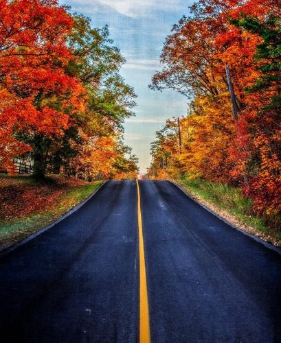 Road To Fall 6.5 7 7 20.5 Marino Favretto  Creative Bronze