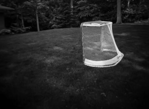 Empty Net (Taken Wth 37 Holga)  6 6.5 6.5 19 Patrick Mohide  Pictorial Gold