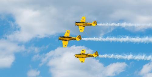 Flying Trio 7 8 7.5 22.5 Bertin Francoeur  Pictorial Gold