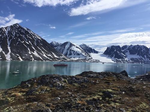 Arctic 7.5 7.5 6.5 21.5 Ewa Rakowski  Pictorial Silver