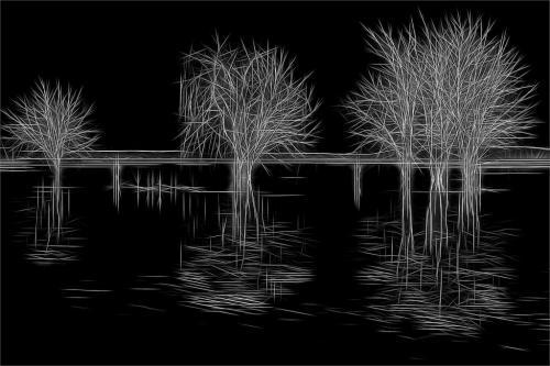 Montebello Park Underwater 7 7.5 7.5 22 Geoff Dunn  Creative Gold