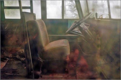 School Bus Memories 7 7 7.5 21.5 James Hamilton  Pictorial Gold