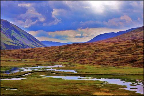 Scotland Vista  Pictorial Gold