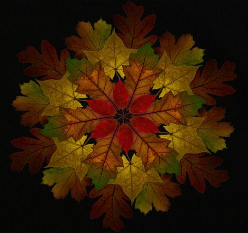 Autumn Leaves - Doug Doede -  Creative