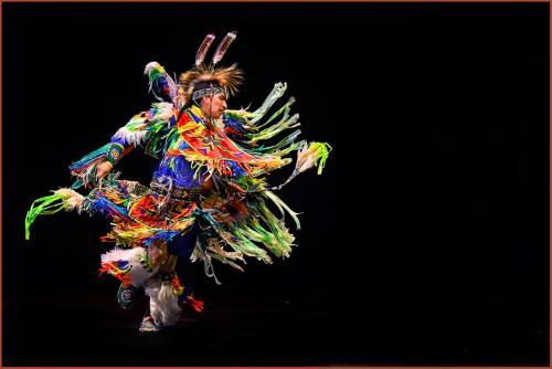 Indigenous Dancer 8 7.5 7.5 23 GPP Greg Alderson  Pictorial Gold