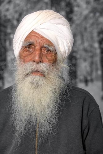 Sikh Elder 24 HM GPP Bert Pierre  Pictorial Gold