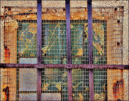 Window Security 20.5 James Hamilton  Pictorial Gold