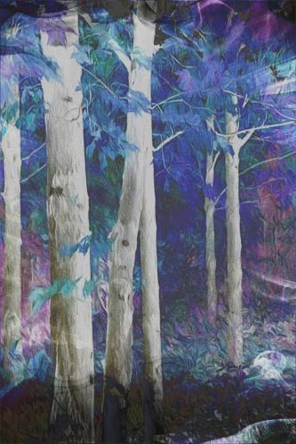 Fantasy Woods 22 Leonie Holmes  Creative Gold