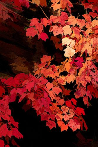 Autumn Fantasy 18.5 Marilyn Jarrett  Creative Master