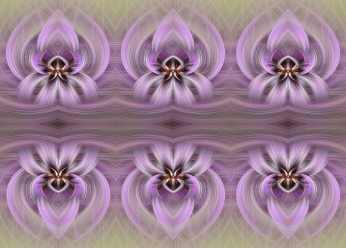 Orchid Abstraction Times Six 22.5 Virginia Stranaghan  Creative Gold
