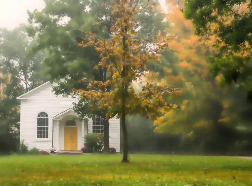 Misty Morning 19 Robert Melnyk  Pictorial Gold